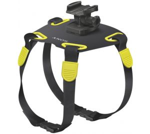 Action cam dog harness - demo voorraad